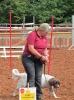 Tag des Pferdes 2014